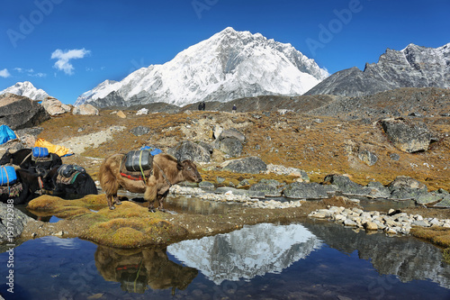 Poster de jardin Reflexion Nuptse and Lhotse peaks views from Lobuche village