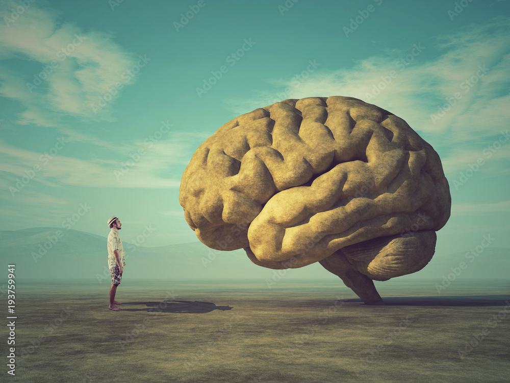 Fototapety, obrazy: Conceptual image of a large stone in the shape of the human brain
