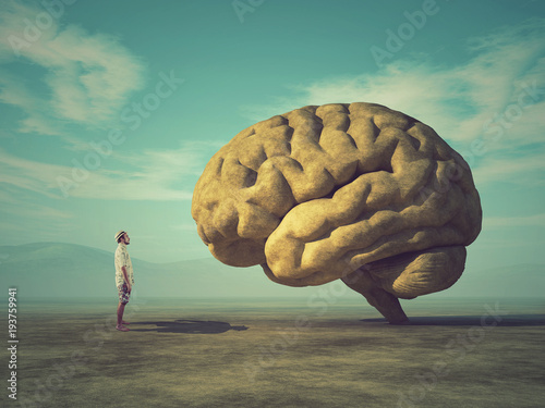 Leinwand Poster Conceptual image of a large stone in the shape of the human brain