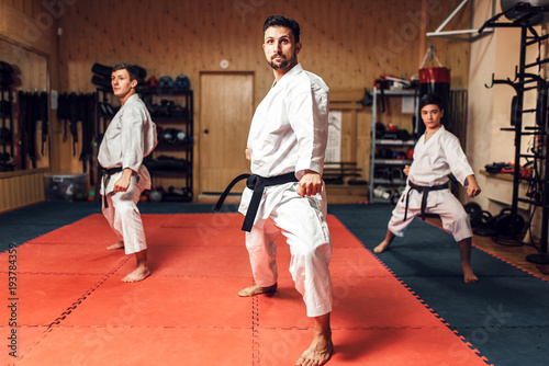 Photo Stands Martial arts Martial arts, fight training in action