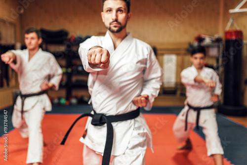 Obrazy Sztuki Walki  martial-arts-fighters-hone-their-skills