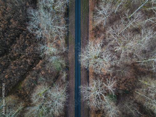 widok-z-lotu-ptaka-prosta-droga-w-amboise-lesie-francja-sezon-zimowy