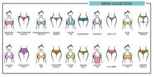 Woman Bikini Types Collection ...
