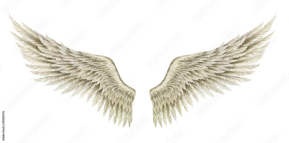 Wings of Angel