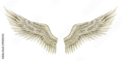 fototapeta na ścianę Wings of Angel