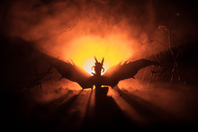 Silhouette Of Fire Breathing Dragon With Big Wings On A Dark Orange Background. Horror Image