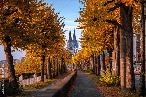 Kolner Dom Im Herbst Kaufen Sie Dieses Foto Und Finden Sie Ahnliche Bilder Auf Adobe Stock Adobe Stock