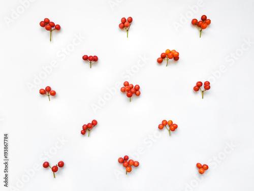 Fotografie, Obraz  Bright rowan berries in a pattern on white background