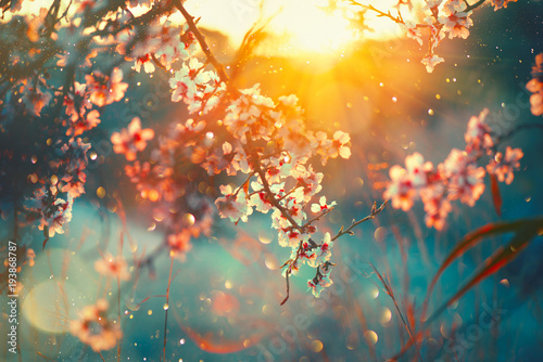 Poster Nature Spring blossom background. Nature scene with blooming tree and sun flare. Spring flowers. Beautiful orchard