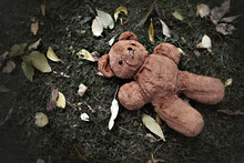 Lost Teddy Bear Laying On The ...