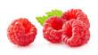 Leinwandbild Motiv Raspberry in closeup