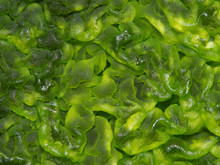 Macro Shot Of Green Algae On S...