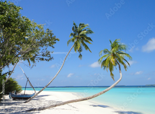 Deurstickers Strand Tropical white sand beach with palm trees in maldives