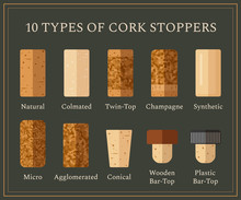 10 Types Of Cork Stoppers. Vec...