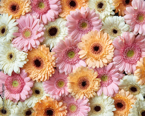 Fotobehang Bloemen Floral background from different gerbera flowers. Spring concept