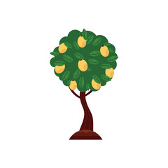 Vector flat green abstract tree apple, pear fruits with big foliage icon. Isolated illustration with forest, garden plant, spring or summer, ecology and environment symbol on white background.