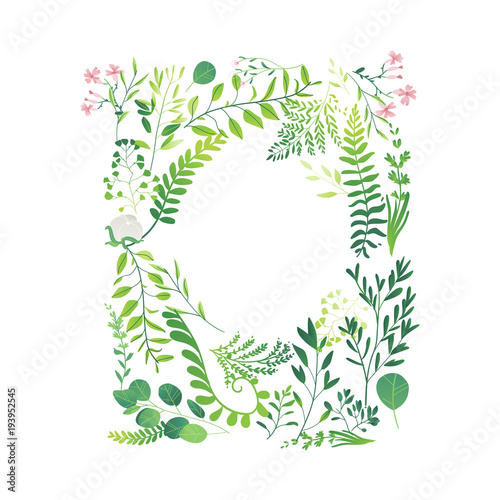 Vector Cartoon Abstract Green Plants Flower Herbs Frame Template