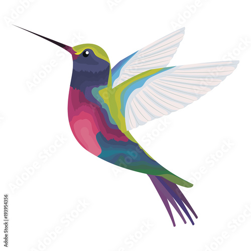 cute hummingbird flying icon vector illustration design Canvas Print