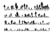 Ink Hand Drawn Forest. Design ...