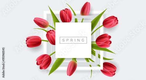 Photo  White frame with red tulip flower and green leaf
