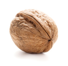Single Walnut In Shell Isolated On White Background