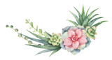 Fototapeta Kwiaty - Watercolor vector wreath of cacti and succulent plants isolated on white background.