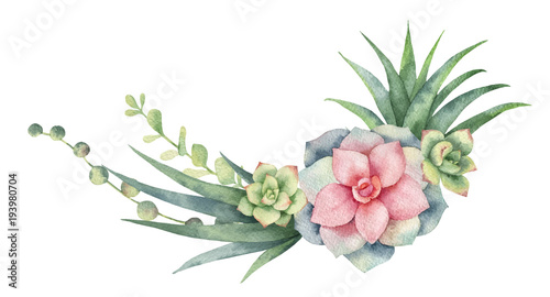 Fotomural Watercolor vector wreath of cacti and succulent plants isolated on white background