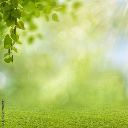 Foto auf Leinwand Garten Funny seasonal backgrounds with bright foliage and beauty bokeh