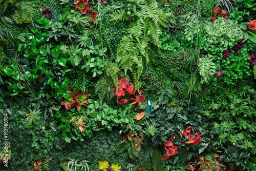 Obraz wall with greenery - fototapety do salonu