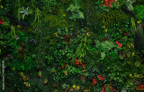 Poster Vegetal wall with greenery