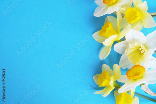 Foto op Canvas Narcis Tender minimalistic spring flowers composition on texture surface. Beautiful feminine plant decoration for holiday greeting card. Summertime, summer, spring, march april, june july. Happy mother's day