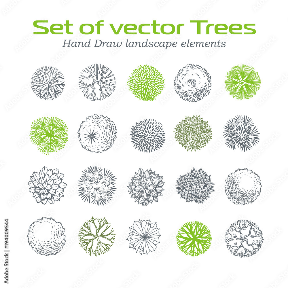 Fototapety, obrazy: Different plants and trees vector set for landscape design