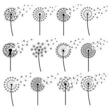Set Of Stylized Dandelions Blo...