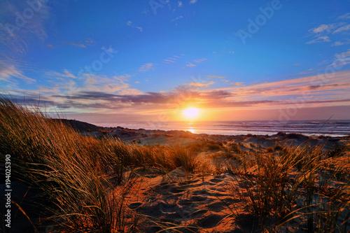 Photo sur Toile Marron chocolat Coucher de soleil sur la dune