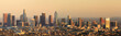 Los Angeles Panoramic Skyline Sunset. Seen from behind the Griffith Observatory in Griffith Park in February 2018.