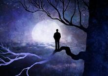 Uomo Tra Rami Di Albero Che Guarda La Luna E Le Stelle Dell'universo
