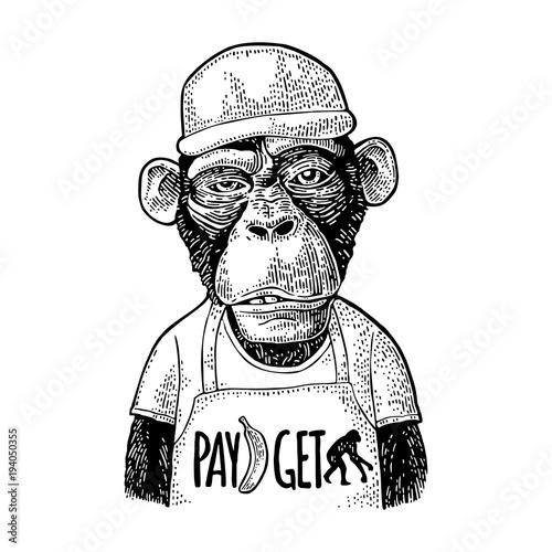 malpa-jako-pracownik-fast-food-czarno-bialy-rysunek