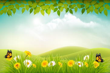 Naklejka Spring nature landscape background with flowers and butterflies. Vector.