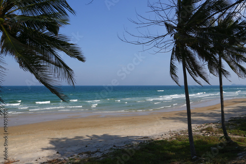 Foto op Aluminium Cathedral Cove Thailand sea with coconut trees, beautiful.