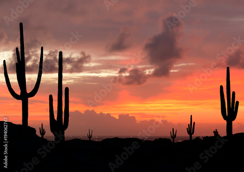 Papiers peints Las Vegas Sunset in the Desert with Silhouette of Saguaro Cactus with city in background