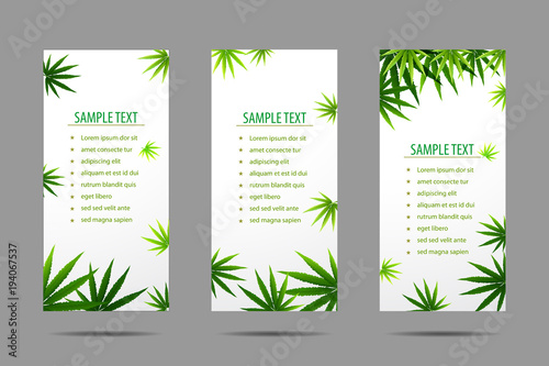 Fototapeta Frame formed with hemp (marijuana) leaves isolated on white. obraz