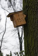 Wooden Bird Box On Tree Trunk.