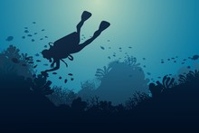 Silhouette Of Diver, Coral Ree...