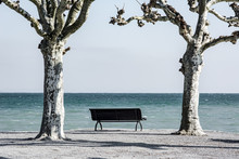 Bench At The Lakeside Of Lake ...