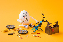Funny Concentrated Egg Repairi...