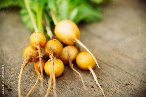 Ripe black, orange and yellow carrots, radish with parsley and thyme. Dark stone background. Autumn harvest