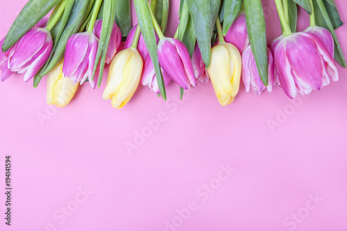 Fotografie, Obraz  Spring Tulip Background for Easter and Mother's Day