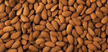 Almond Background Panorama.