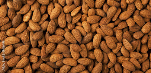 Almond background panorama. Canvas Print
