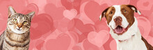 Dog And Cat Valentine Hearts Web Banner